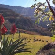 sungubala-eco-camp-in-the-mountains